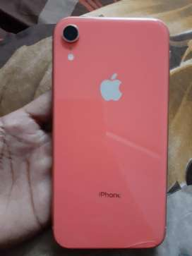 Iphone XR CORAL COLOUR