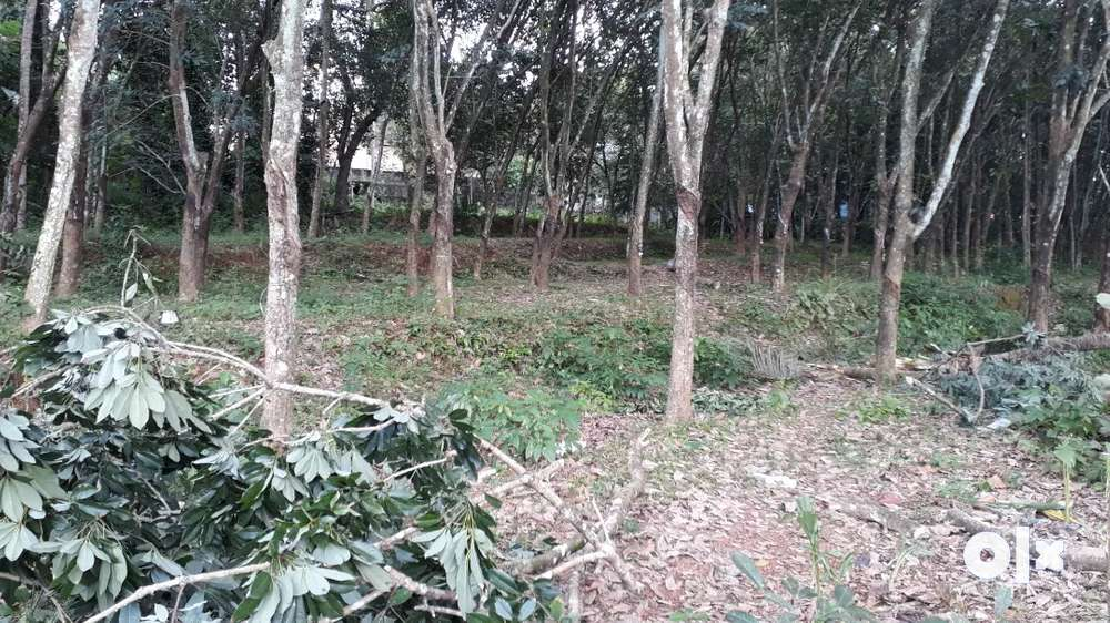 60 cent for sale in adoor, anandapally