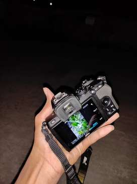 Contact for shoot (Nikon z50)