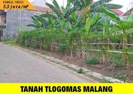 Tanah murah dekat kampus di Tlogomas , Dinoyo kota Malang