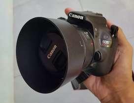 Canon 100D kit 18-55mm fix Canon 50mm STM  F1.8