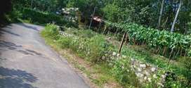 കോലിയക്കോട് ബൈപ്പാസിൽ നിന്നും 1 കിലോമീറ്റർ മാറി കിഴാമലയ്ക്കൽ ക്ഷേത്രം