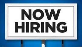 10 + 2 pass jobs available