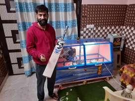 Cricket bat knocking from smart knocking machine