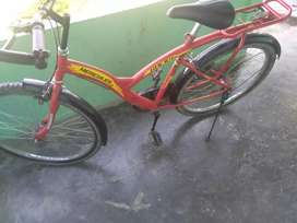 Hercules Rocky 2.0 Bicycle