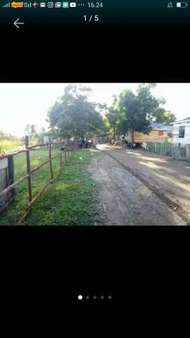 ditawarkan Bagi Bangun Perumahan Lokasi Tanah Di Jakabaring Opi