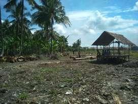 Tanah kaplingan ada 80 tapak ukuran 6x15 SK Camat di hamparan perak