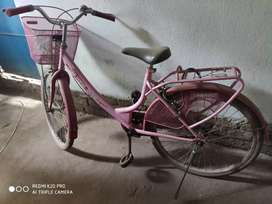 Miss India gold bicycle