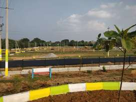 30X40 MUDA approved sites in Mysore,Near Elavala