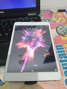 ipad mini 32 gb wifi only