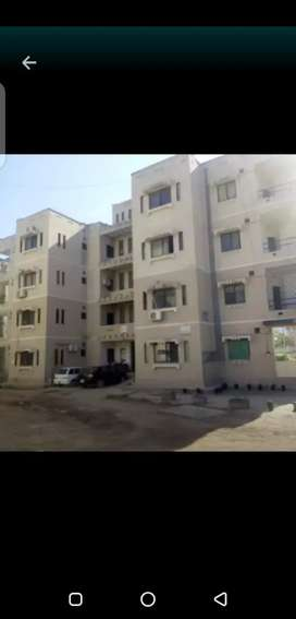G 11 3 pha e type new flat for rent