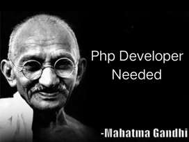 Need Php freelancer for working on project