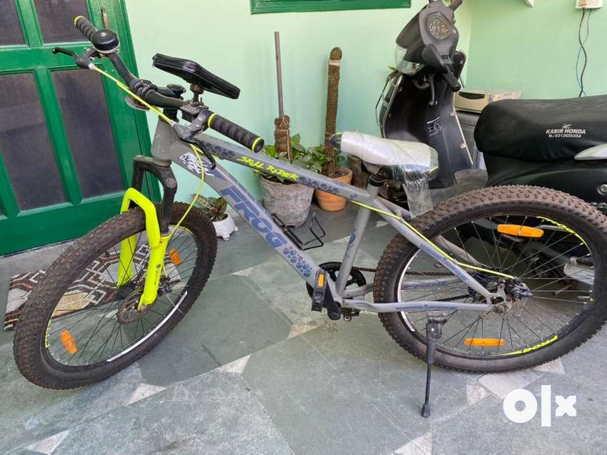 Bicyle in excellent condition (Frog Brand)