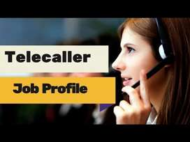 Telecaller job male/female both can apply