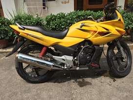Yellow color, Karizma