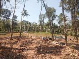 90(30, 20, 10..etc) Cent  house plot in Kurumpanadom, Changanacherry