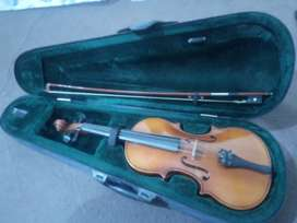 Violin with stick,  stone and Casing zip Box