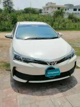Corolla GLI 2020 original bumpers with white paint