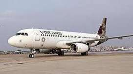 Vistara Airlines jobs /Ground Staff/Airlines/Hospitality/Airport Staff