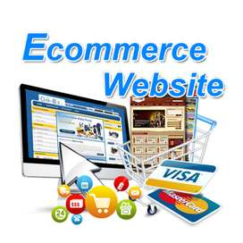 I will setup your ecommerce business for you