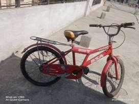 BSA champ cycle