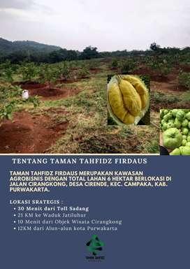 Investasi Usaha dunia & akhirat Kavling Tanah Taman Tahfidz Firdaus