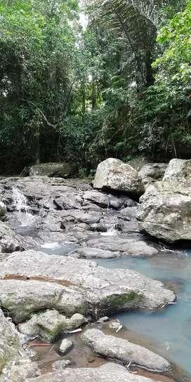 Dijual murah tanah view sungai dan jungle dekat Galalima Glamping Bali