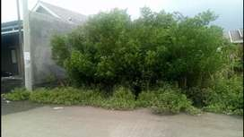 Tanah SHM lokasi ciamik di gunung anyar dkt medokan merr pandugo