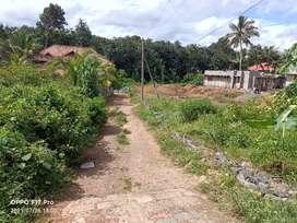 10 Cent Residential house plot near Kodinattukunnu,