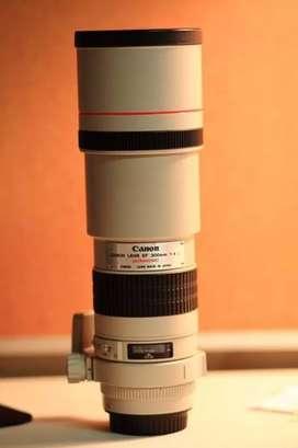 Canon 300mm f4 (non-IS) prime lens