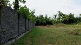 Tanah Luas 36 are di dekat NBBS, Panji, Singaraja!