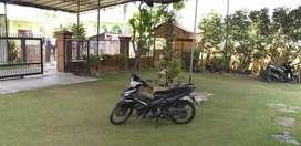 Jupiter MX 2011