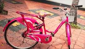 Ladybird cycle