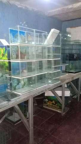 Aquarium kaca baru