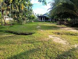 1.5 bigha land for sale