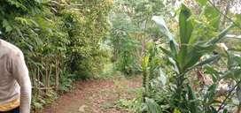 Disewakan tanah seluas 3420m2 di Bali utara