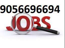 tally operator for billing and account staff needed