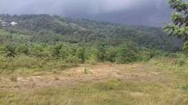 Tanah kebun kerjasama / dikerjasamakan untuk pertanian & peternakan