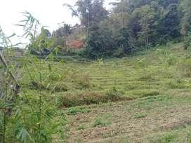 Tanah pinggir jalan solo tawangmangu