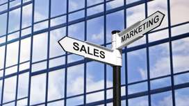 Staff Required for Sales and Marketing