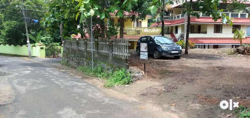 Plot for sale thiruvankulam near chottanikara 0