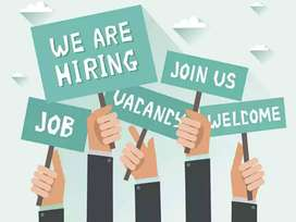 Travel & Tourism Graduates required with more than 2 years of work exp
