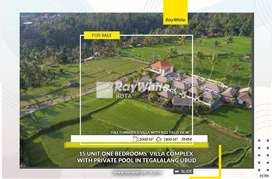 15 Unit One Bedrooms Accommodation Villa in Villa Complex in UBUD