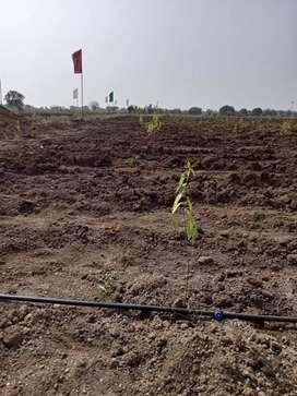 121Sqyds,Farming land for Sale @Sadasivpet