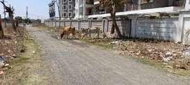 Near D Mart Beltarodi Manish Nagar