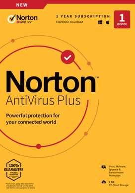 Nortan Antivirus software
