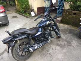 Three year old 150 cc Bajaj avenger for sale