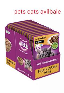 Cat foods are available