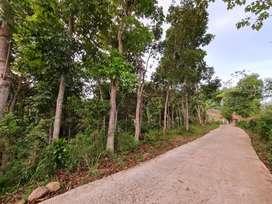 Tanah Bandung Area Ciparay, Harga 700 Ribuan Permeter