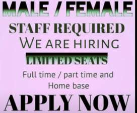 Online and office base jobs available